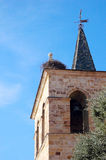 Nest of storks in a church steeple Stock Image