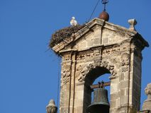 Nest of storks on the top of a bell tower royalty free stock images