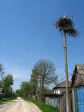 Nest of storks in village Royalty Free Stock Photo