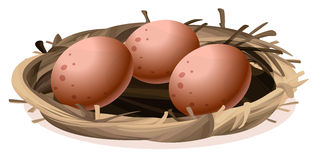 A nest with three eggs stock illustration