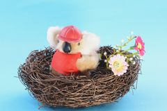 Nest with a Toy Koala Stock Photo