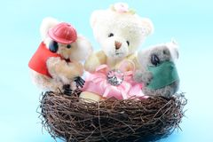 Nest with a toy Teddy Bear and two Koala Stock Photo