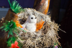 Nest Toys royalty free stock image