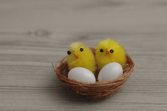 A nest with two baby chickens and two eggs. On a wooden background stock images