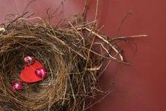 Nest van liefde Stock Afbeeldingen