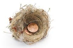 Nest van pence stock afbeeldingen