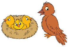 Nest (vector clip-art) Stock Images