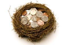 Nest voll des Geldes für Sparungen Stockfotos