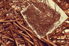 Nest von Strohen Stockbild