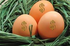 Nest With Eggs Stock Photo