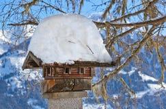 Nestbox bird house Stock Images