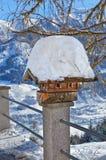 Nestbox bird house Stock Image