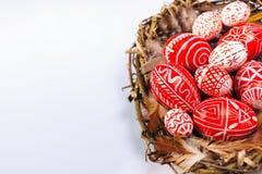 Nestelen de rode eieren van close-uppasen met volks wit patroon binnen vogel op witte achtergrond Hoogste mening royalty-vrije stock fotografie