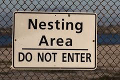 Nesting area do not enter sign. On a chain link fence with protected wildlife area behind it Royalty Free Stock Images