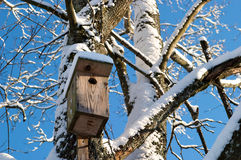 Nesting box Royalty Free Stock Image