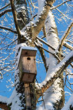 Nesting box Royalty Free Stock Images