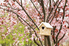 Nesting Box Stock Photo