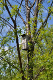 Nesting box. (birdhouse) in a tree in the spring Stock Photos