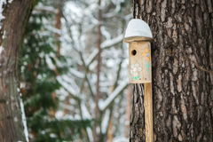 Nesting box Stock Photography