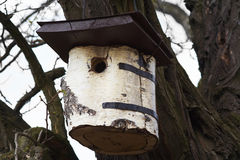 Nesting box for birds Royalty Free Stock Image