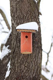 Nesting Box Covered by Snow Stock Photos