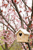 Nesting box Stock Images