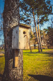 Nesting box Stock Image