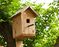 Nesting box outdoor Royalty Free Stock Image