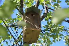 A nesting box. Royalty Free Stock Photography