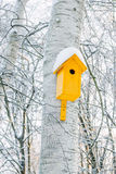 Nesting box on tree covered by snow on cold winter park. Stock Photo