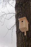 Nesting box on a tree. In park Stock Images