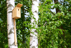 Nesting box on the tree Royalty Free Stock Photos
