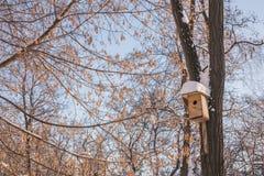 Nesting box under snow Stock Photo