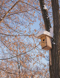 Nesting box under snow Stock Image