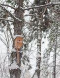 Nesting box under snow Stock Photos
