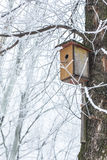 Nesting box under snow Stock Photos