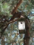 Nesting-box Stock Photo