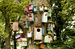 Nesting-boxes Stock Photography
