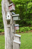 Nesting boxes Royalty Free Stock Image