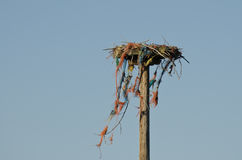 Nesting Platform Standing Against a Blue Sky Royalty Free Stock Image
