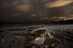 Sea turtle nesting on the beach at night and milky way starry sky. Nesting season in caribbean beaches. Turtles complete a long journey to reproduction royalty free stock photo