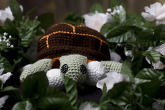 Nesting Turtle. A crocheted turle with eggs in a nest royalty free stock images