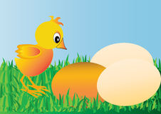 Nestling and egg Royalty Free Stock Photography