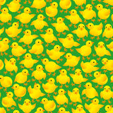 Nestlings. Seamless pattern made of yellow chicks stock illustration