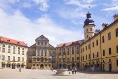 Nesvizh城堡 库存图片