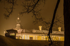 Nesvizh Castle at night framed with tree branches during heavy snowing. Nesvizh, Belarus - December 24, 2016: Night winter view of the illuminated medieval Royalty Free Stock Photo
