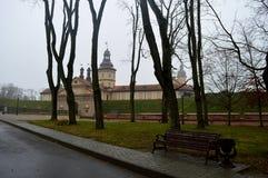 Nesvizh Schloss Historisches Schloss der Mittelalter Ein Herbstwinter-Panorama Lizenzfreie Stockfotos