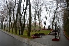 Nesvizh Schloss Historisches Schloss der Mittelalter Ein Herbstwinter-Panorama Stockfotografie