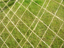 Net against the grass Royalty Free Stock Image