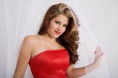 Net beauty Royalty Free Stock Image